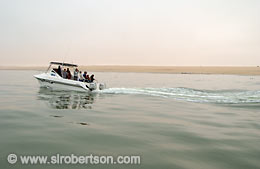 Seal and Dolphin Tour, Walvis Bay - Click for large image
