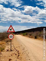 Steenbok Crossing - Click for large image