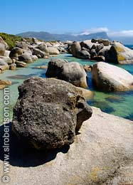 Boulders Beach - Click for large image