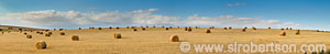 Hay Bales - Click for large image