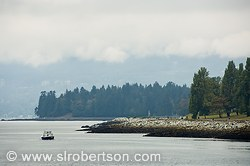 Pictures of Stanley Park
