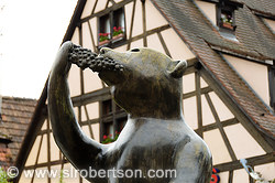 Pictures of Andlau