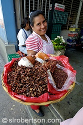 Woman selling chapulines - fried grasshoppers - at Mercado 20 de Noviembre, Oaxaca