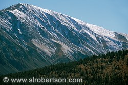 Pictures of Boreas Pass