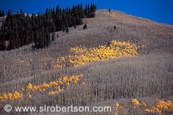 Pictures of Kenosha Pass