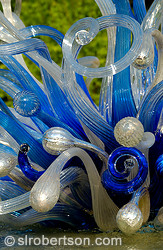 Chihuly glass scupture, Atlanta Botanical Gardens