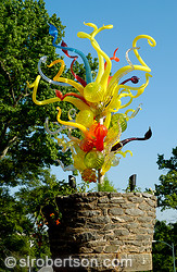Chihuly in the Garden 10
