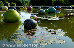 Chihuly Lily Pond 2