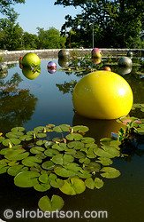 Chihuly Lily Pond 1